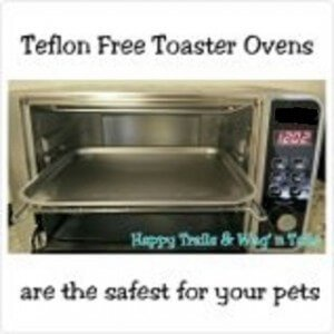 Convection oven without non-stick coating