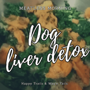Dog meatless meal