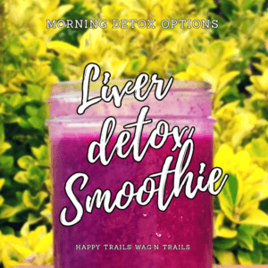 Pet Liver Detox Smoothie