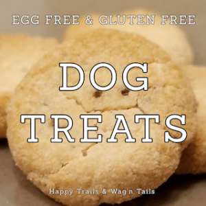 Gluten Free Vegan Dog Treats